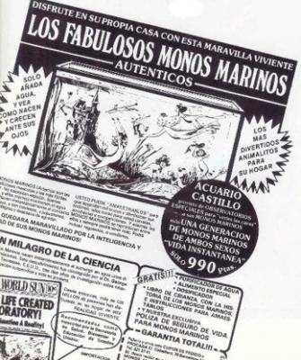 Los fabulosos monos marinos