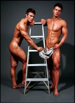 Ladder hunks